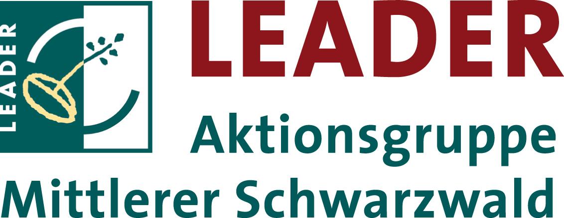 Leader-MiS-Logo