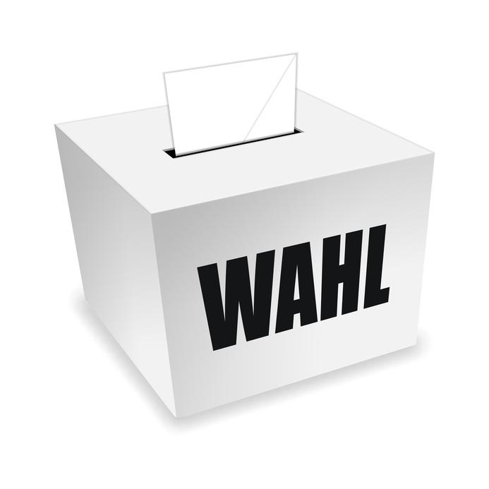 Bild Wahlurne neutral